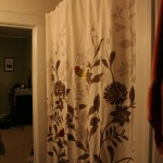 The new curtain!